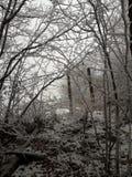 Barrière de neige Photographie stock libre de droits