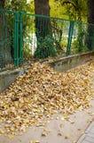 Barrière de parc photo libre de droits