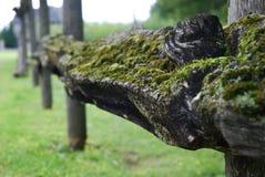 Barrière de rail fendu en bois Photos stock