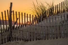 Barrière dunaire photos stock