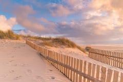 Barrière dunaire sur la plage photo libre de droits