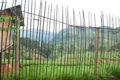 Barrière en bambou Photographie stock libre de droits