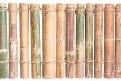 Barrière en bambou avec la corde d'isolement sur le fond blanc images stock