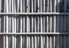 Barrière en bambou blanche Photos libres de droits