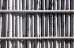 Barrière en bambou blanche Photo stock