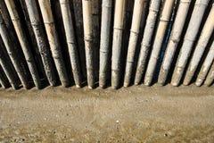 Barrière en bambou en plage de boue Photographie stock