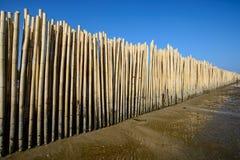 Barrière en bambou sous le ciel bleu Photographie stock