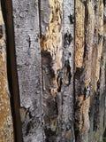 Barrière en bois Photos stock