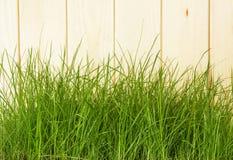 Barrière en bois avec l'herbe verte Photographie stock libre de droits