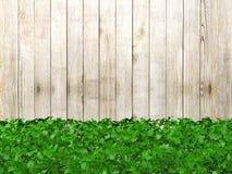 Barrière en bois couverte d'usines avec l'espace de copie Photographie stock libre de droits