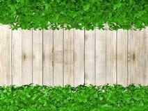 Barrière en bois couverte d'usines avec l'espace de copie Images stock
