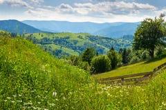 Barrière en bois en montagnes Images libres de droits