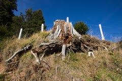 Barrière en bois de colline photo libre de droits