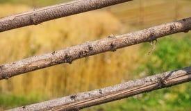 Barrière en bois de poteaux Photos stock