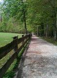 Barrière en bois du côté de la route entre les arbres dans la forêt Photo stock