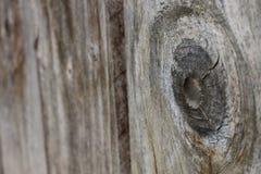 Barrière en bois Plank - pêché avec la profondeur Photos libres de droits