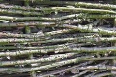 Barrière en bois, style de vintage de village Photo libre de droits