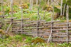 Barrière en bois suédoise traditionnelle Photographie stock libre de droits