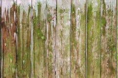 Barrière en bois verte comme fond naturel Photo libre de droits