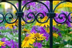 Barrière en fer forgé avec un fond brouillé des fleurs Images stock