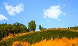 Barrière et arbres sur le sommet sur Sunny Day Image stock