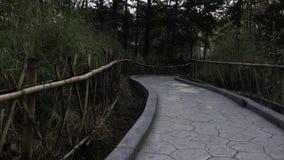 Barrière et chemin en bambou Photos stock