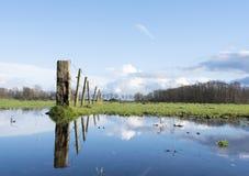 Barrière et réflexion dans le magma dans le pré vert en Hollande près des eemnes et d'Amersfoort Photos stock