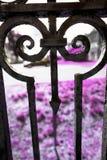 Barrière fleurie de fer travaillé avec la flèche, Rockville, le Connecticut Photo stock