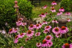 Barrière Gardening Photographie stock libre de droits