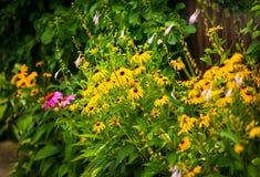 Barrière Gardening Photos libres de droits