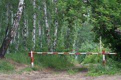 Barrière in het bos Stock Foto