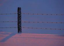 Barrière Icy Blue Pink de neige Images libres de droits