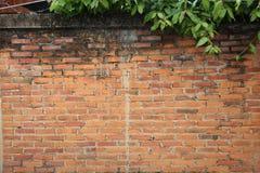 Barrière le long de l'orange Photo libre de droits