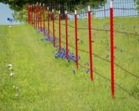 Barrière rouge de barbelé dans un domaine de Bluebonnet Image libre de droits