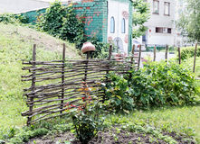 Barrière rurale d'acacia dans un paysage de ville Photo stock
