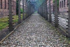 Barrières de barbelé à Auschwitz photos libres de droits