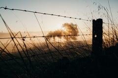 Barrières de barbelé divisant la terre Belle lumière d'aube photo libre de droits