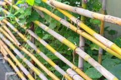 Barrières en bambou dans la campagne agricole de jardin image stock