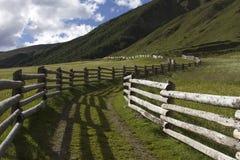 Barrières en bois dans les Alpes photographie stock libre de droits