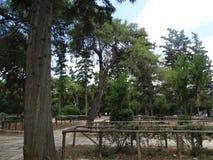 Barrières en bois en parc près de l'Acropole grecque photos libres de droits