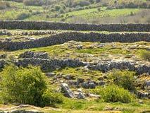 Barrières en pierre dans les terres cultivables Photos libres de droits