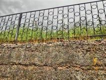 barrières, herbe, mur, béton, vieux béton photographie stock libre de droits