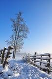 Barrières op een gebied in de winter Stock Afbeelding