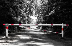 Barrier crossing a way in the forest Royalty Free Stock Images