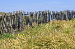Barrier in the Dunes at Quiberon in France Stock Photos