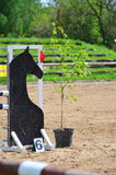 Barrier for jumping horses Stock Images