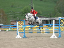 Barrier. Racing horse Recreation hobby infatuation entertainment rider hippodrome stable Stock Photography