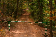 Barrier on road in autumn forest. Closed barrier on road in autumn forest Stock Photo