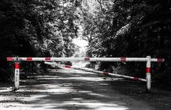 Barriera che attraversa un modo nella foresta fotografia stock libera da diritti