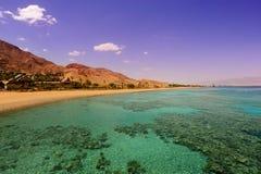 Barriera corallina Fotografie Stock Libere da Diritti